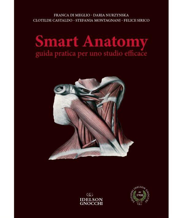 Smart Anatomy