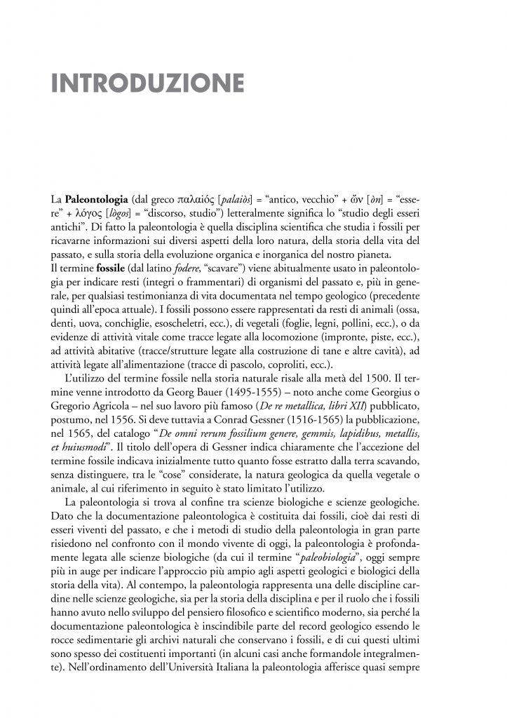 https://www.idelsongnocchi.com/shop/wp-content/uploads/2020/04/avantesto-x-web_Pagina_21-723x1024.jpg
