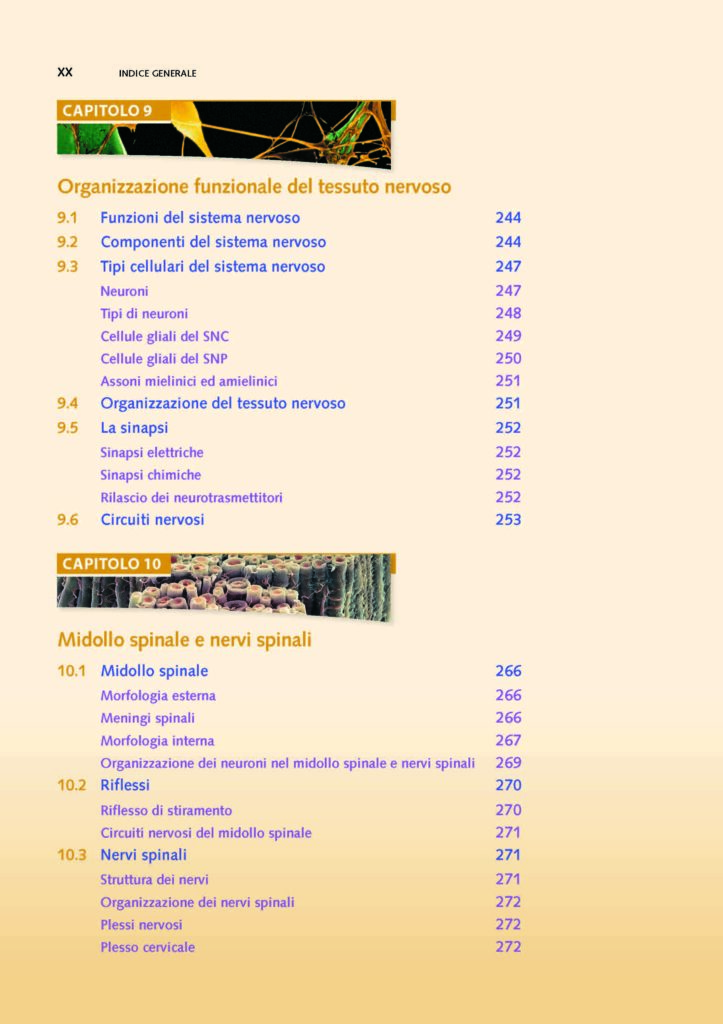 https://www.idelsongnocchi.com/shop/wp-content/uploads/2021/06/Seeley-ANATOMIA.-V-Edizione.-Avantesto_Pagina_18-1-723x1024.jpg